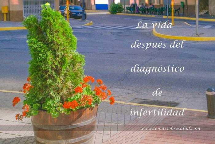 ¿Cómo seguir viviendo luego de un diagnóstico de infertilidad?