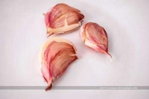 Los mejores alimentos para comer después de tomar antibióticos Chucrut