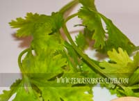 El cilantro es una fuente excelente de minerales como el potasio, calcio, manganeso, hierro y magnesio.