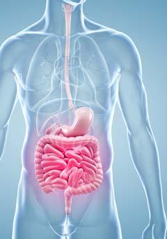Enfermedad por reflujo gastroesofágico