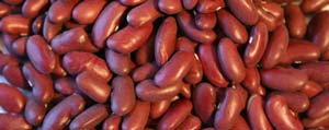 la salud del ovulo - arándanos