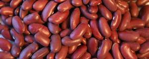 Omega-3 para una salud óptima rúcula