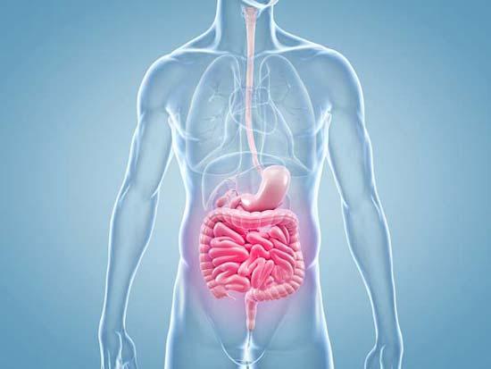 Remedios naturales disponibles para el reflujo gástrico